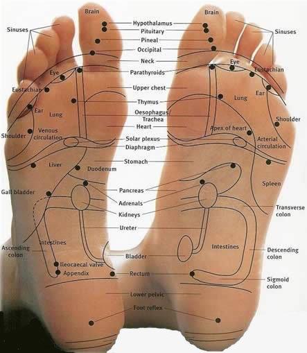 zoner under foden